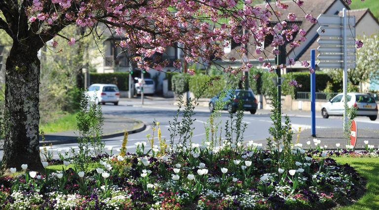 Fleurissement. 75 agents s'occupent des espaces verts à la Ville de Brive.